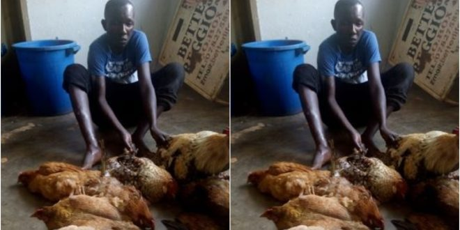 Father Of Seven Stoned To Death For Stealing Chicken To Feed His Family 1