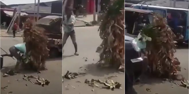 Hilarious video of a masquerade and a kid fighting on the streets goes viral (video) 1