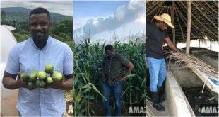 Check Out Inside Ghanaian Actor John Dumelo's Huge Successful Farm - Photos 47
