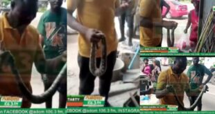 Two Sakawa Boys Fight a Women For Killing Snake That Crawled Out Of Their Car - Video 51