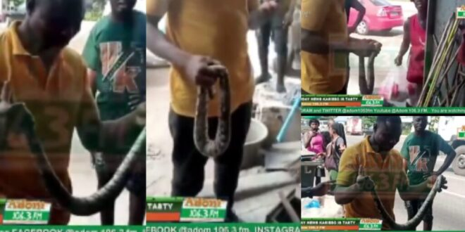 Two Sakawa Boys Fight a Women For Killing Snake That Crawled Out Of Their Car - Video 1