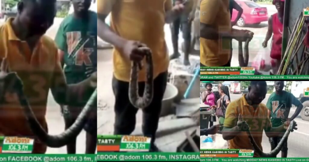 Two Sakawa Boys Fight a Women For Killing Snake That Crawled Out Of Their Car - Video