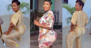 Victoria Lebene breaks the internet with her twerking video 10