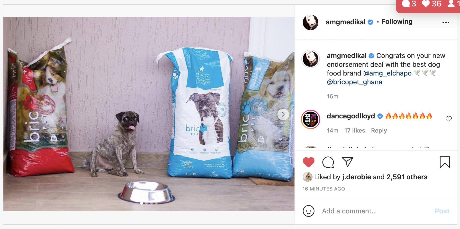 Medikal's dog bags an ambassadorial deal with a dog food company - Photos 3