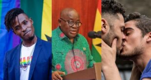 'We had hope that Akufo-Addo will consider us but we are now in danger'- LGBTQ director in Ghana 39