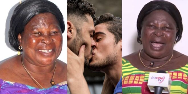 """""""We need to do rituals to cleanse Ghana after talking about LGBTQ""""- Akua Donkor 1"""
