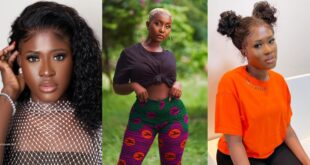 Blogger accuses Fella Makafui of being a lesbian dating Lharley before meeting Medikal. 10