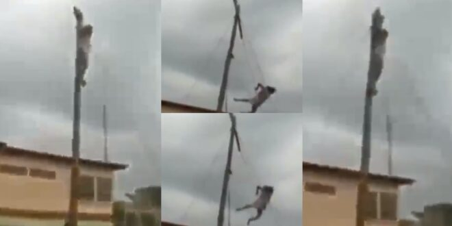 Man acting as Jesus falls from the cross and breaks his legs (video) 1
