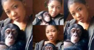 Photos: I will rather date a monkey than a man - Lady falls for a monkey after several broken hearts 27