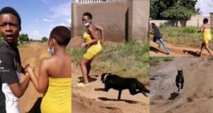Yawa Video: Man runs away for a dog to attack his girlfriend 11