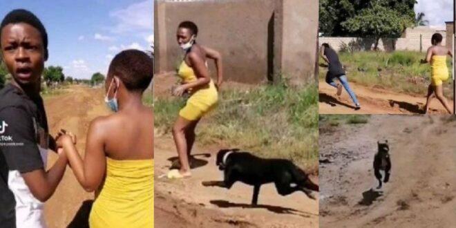 Yawa Video: Man runs away for a dog to attack his girlfriend 1